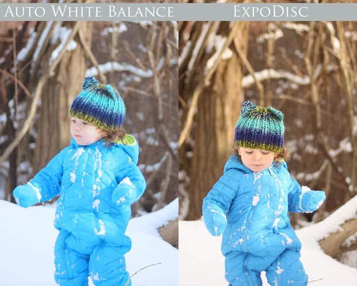 Expodisc vs Auto White Balance digital photography tips