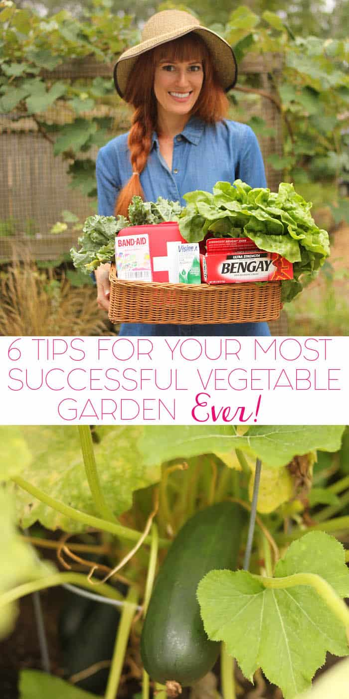 6 Tips For Your Most Successful Vegetable Garden Ever!