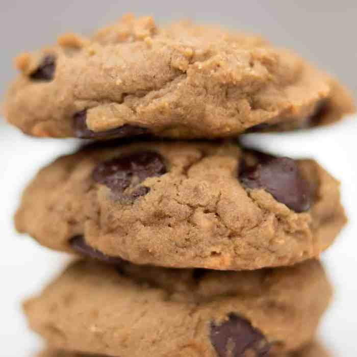 Vegan Chickpea Chocolate Chip Cookies