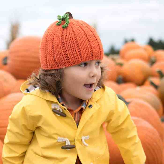 Pumpkin Hat Knitting Pattern by Gina Michele
