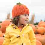 Pumpkin Hat Knitting Pattern Gina Michele