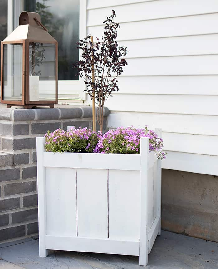 How to Build a Wood Planter for $20