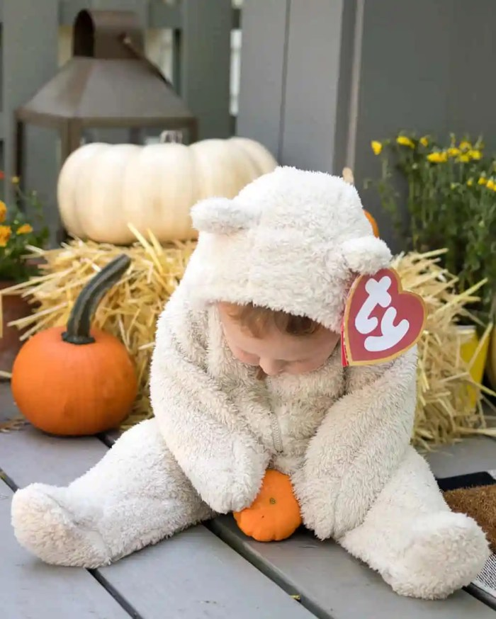 Beanie Baby Costume DIY