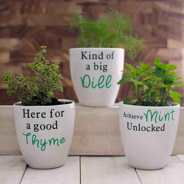 How to Make Custom Flower Pots with Cricut