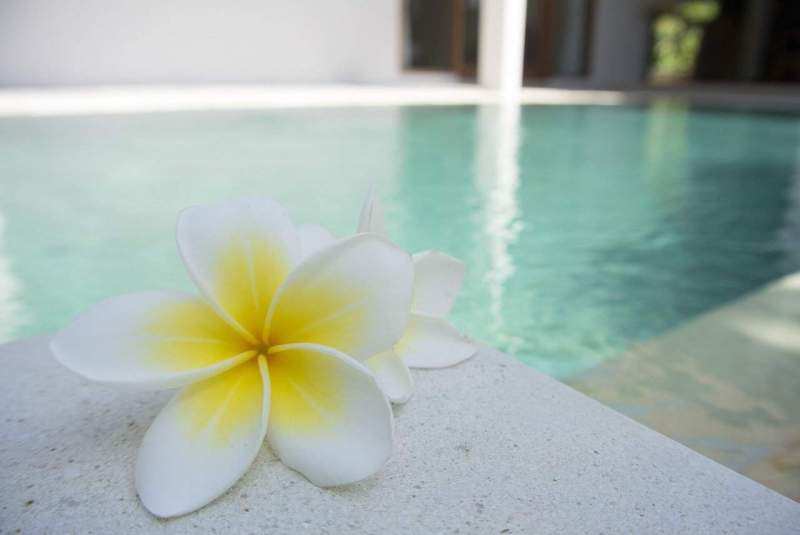five top Wellness Centers in India