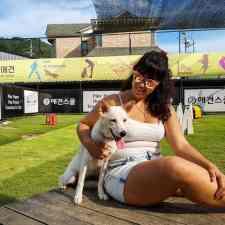 Boss Dog School in Cheongju