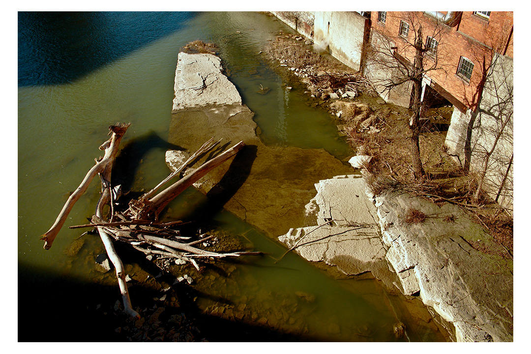 drifted wood in river water