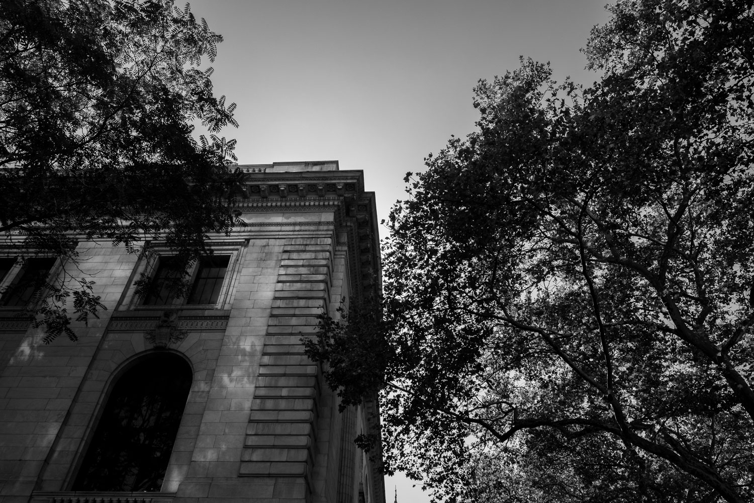 The corner of the New York Public Library building