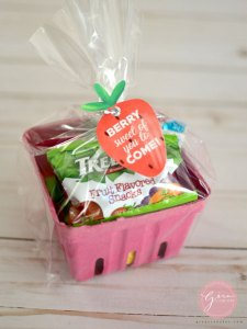 berry basket candy bag idea