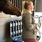The Bond  ~ Horse Diaries of Uno ~ 14