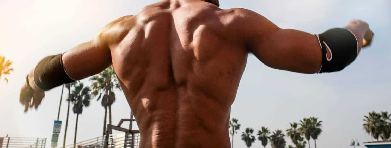 The 6 Best Back Exercises