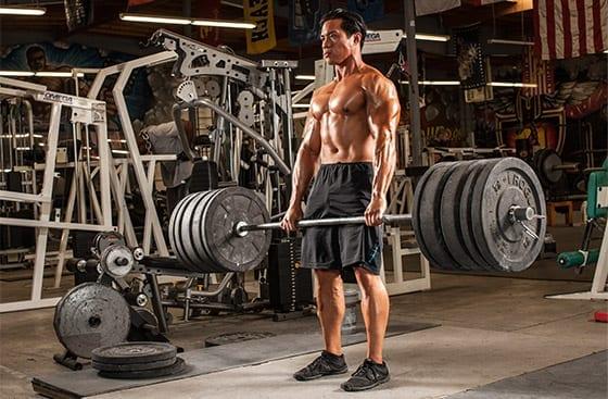 Muskelmasse gewinnen