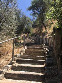 עמק התכלת בשביל הארוך יש 160 מדרגות המוליכות במורד אל הואדי