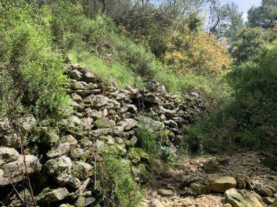 נחל עובדיה (מארס 2020) העיר האבודה - לאורך היובל הדרום מזרחי - שרידי קיר תמך או טרסה