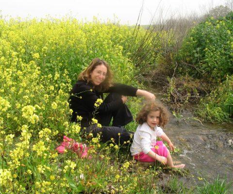 אפריל (ניסן) – הכנת הגינה לקיץ