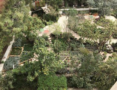 מלון האמריקן קולוני- מבט מלמעלה על גן הירק מאחד החדרים בEast House