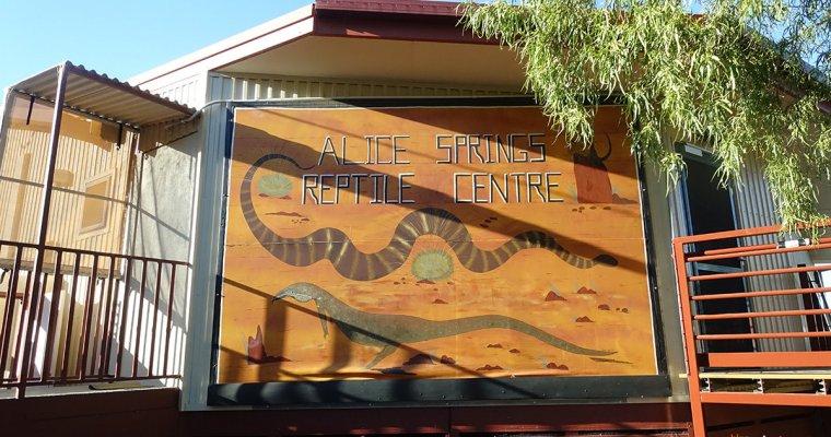 澳洲北領地》愛麗斯泉爬行動物中心(Alice Springs Reptile Centre)