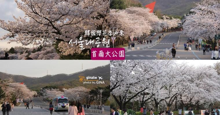 韓國果川市/首爾賞櫻》首爾大公園(서울대공원)滿滿的櫻花路拍到沒人跟你搶!