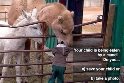 Excellent parenting - NOT!