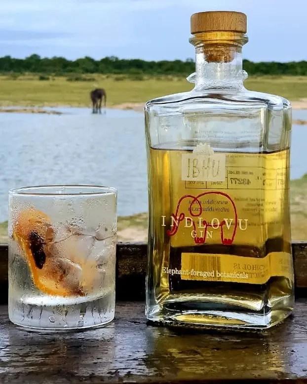 Billede af en Ibhu Indlovu gin med elefant i baggrunden