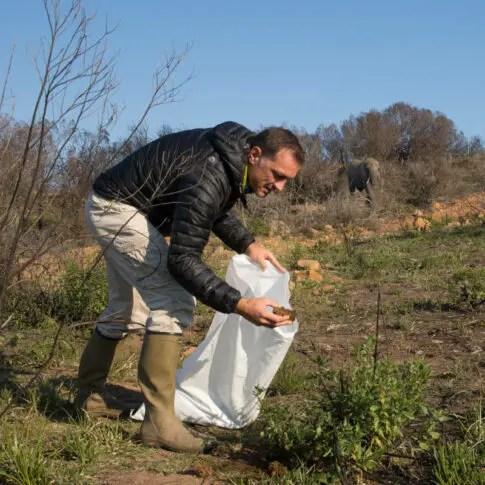 Billede af en mand der samler elefant lort