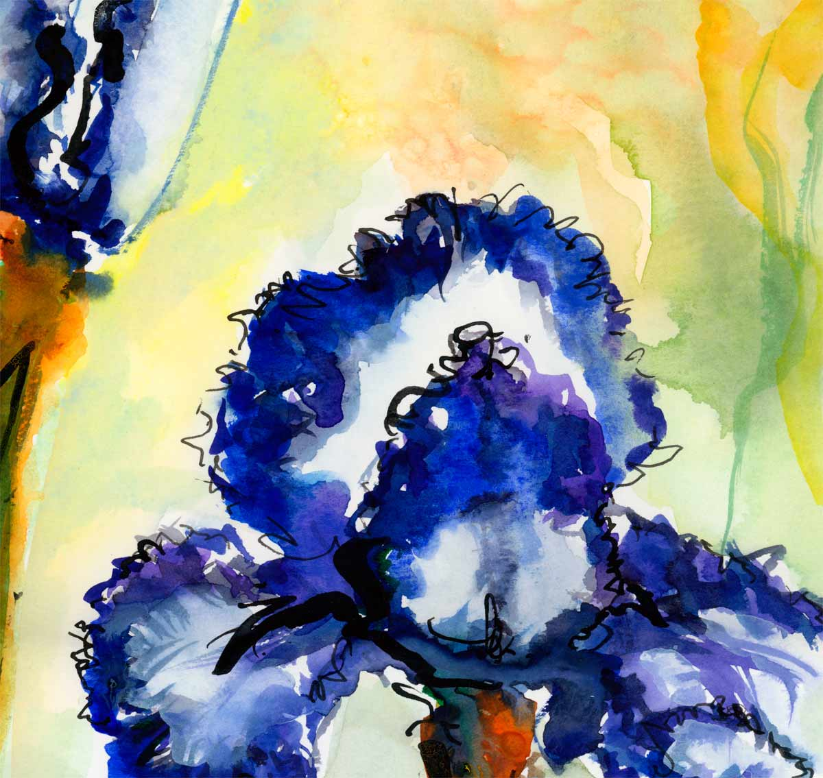 Blue Bearded Iris Flower Painting Watercolors And Ink