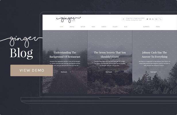 Ginger — Blog/Magazine WordPress Theme