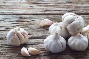 garlic-season-2015