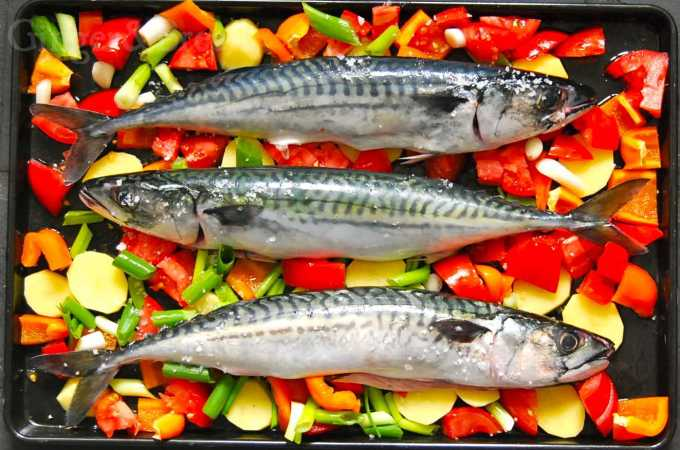 Oven-Roasted Mackerels