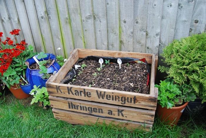 A new take on the 'veg box'