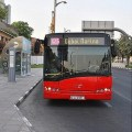 Dubai Bus