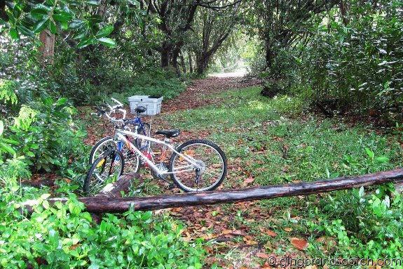Biking in La Digue
