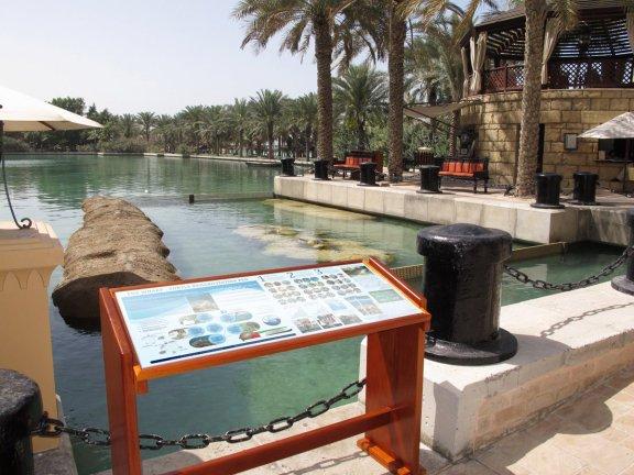 New turtle sanctuary at Mina A'Salam