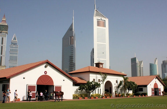 Zabeel Stable