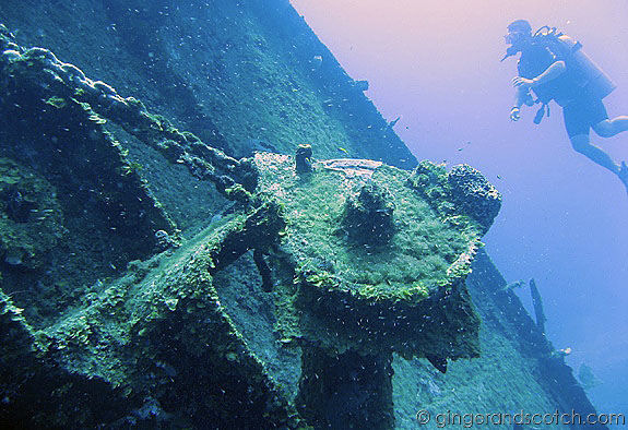 Wreck Dive of El Aguila