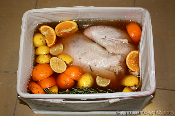 Brining the Turkey