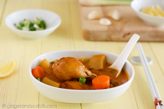 Vietnamese Chicken Curry with Carrots, Potatoes and Taro