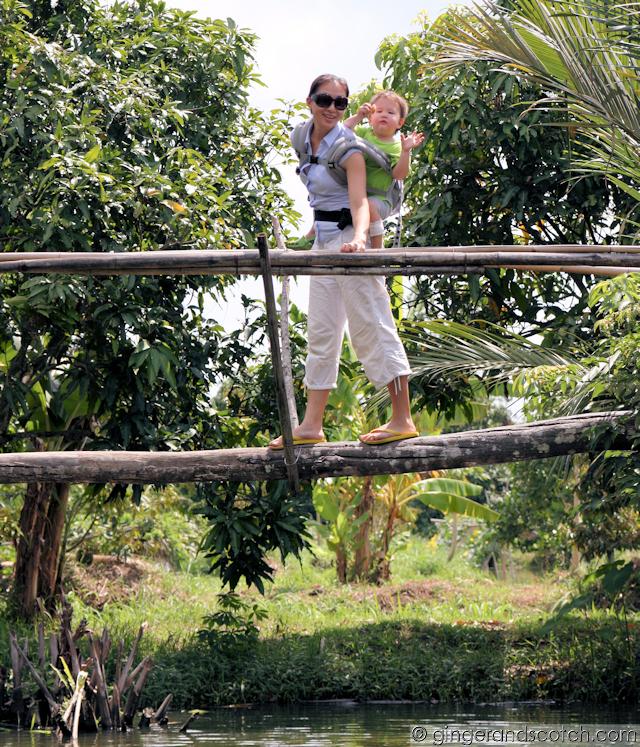 Mekong - Monkey Bridge
