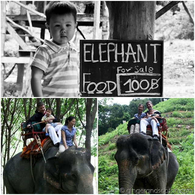 Elephant Riding, Koh Lanta, Thailand
