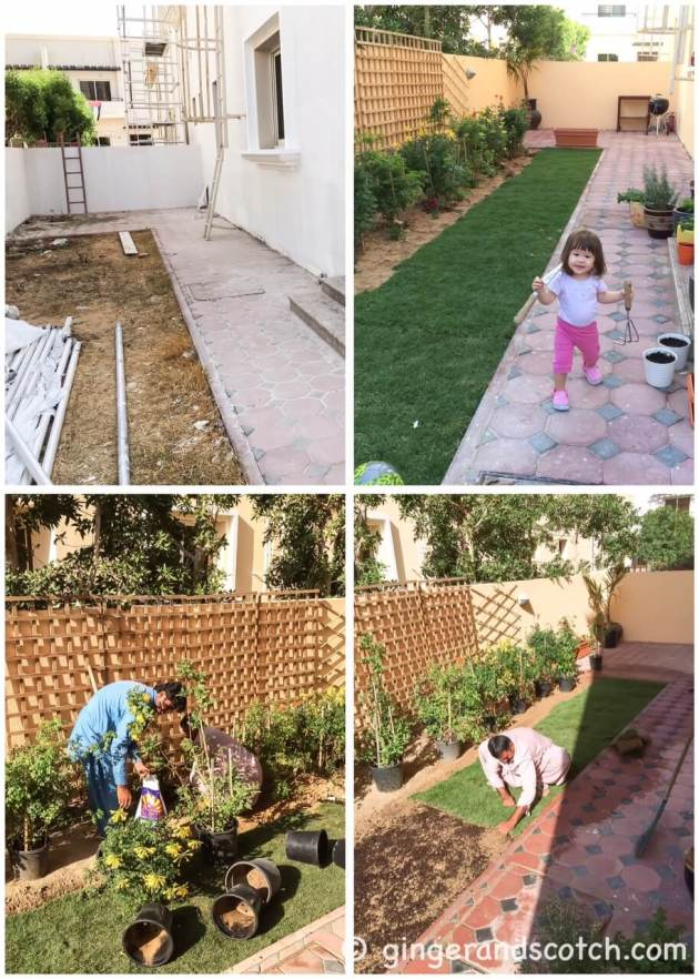 Garden - Before and After