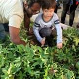 Kids at Community Garden