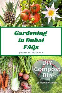 gardening in Dubai FAQs