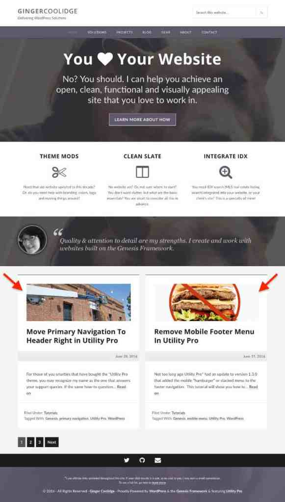screen shot of the homepage of gingercoolidge.com