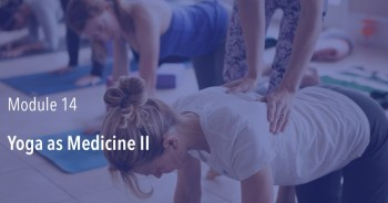 Yoga as Medicine II (Module 14) – Spring 2019