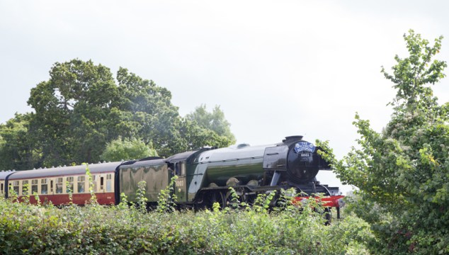 west somerset welcomes flying scotsman