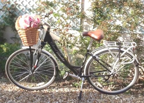 My bike, my triumph!