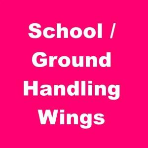 School Wings