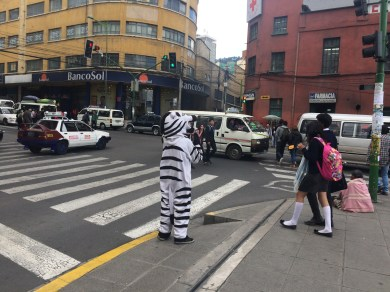 Zebra crossing in La Paz