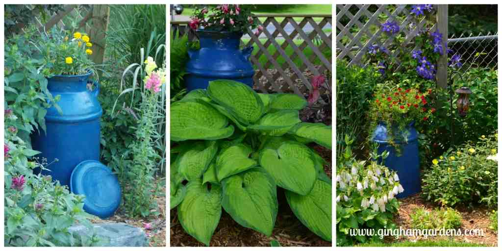 Creative Flower Container Gardening - Vintage milk can used as a flower planter.