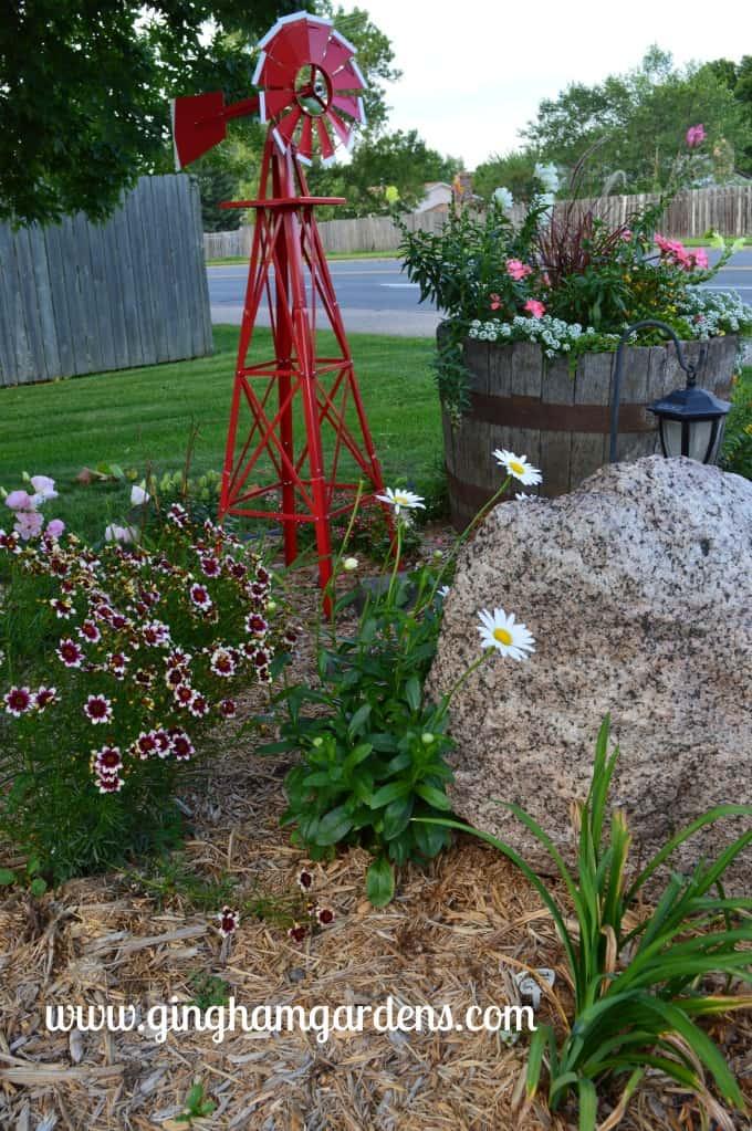 Windmill, Granite Boulder, Satin & Lace Berry Chiffon Coreopsis, Becky shasta daisy at Gingham Gardens